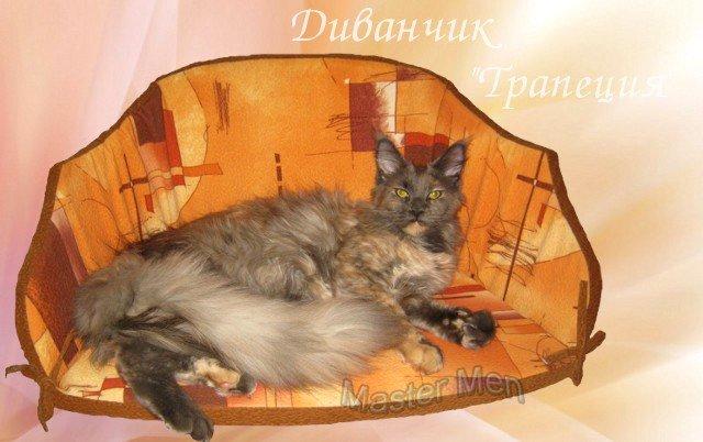http://mistercoon.ru/images/phocagallery/Gracie/thumbs/phoca_thumb_l_trapecia_gracie.jpg